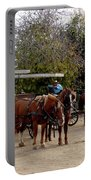 Horse And Carriage Portable Battery Charger