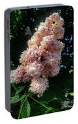Horse Chestnut Portable Battery Charger