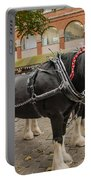Horse Dray Portable Battery Charger
