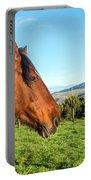 Horse Head Closeup Portable Battery Charger