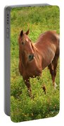 Horse In A Field With Flowers Portable Battery Charger