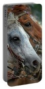 Horse Pair Portable Battery Charger