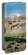 Horse Pasture Portable Battery Charger