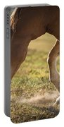 Horse Pawing In Pasture Portable Battery Charger by Steve Gadomski