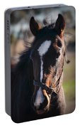 Horse Whispering Portable Battery Charger