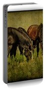 Horses 37 Portable Battery Charger