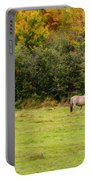 Horses Enjoying A Beautiful Autumn Day Portable Battery Charger