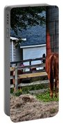 Horses Grazing Portable Battery Charger