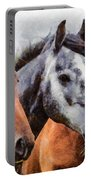 Horses - Id 16217-202754-0357 Portable Battery Charger
