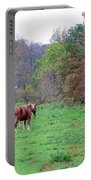 Horses In Autumn Amish Country Portable Battery Charger
