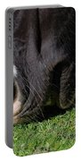 Horses Mouth Portable Battery Charger