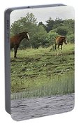 Horses On Ireland's River Shannon Portable Battery Charger