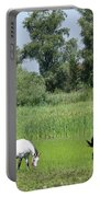 Horses On Pasture Nature Farm Scene Portable Battery Charger