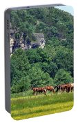 Horses On The Rubideaux Portable Battery Charger