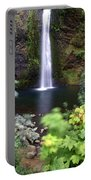 Horsetail Falls Basin Portable Battery Charger
