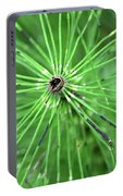 Horsetail Reed 1 Portable Battery Charger