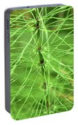 Horsetail Reed 2 Portable Battery Charger