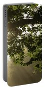 Hot Golden Mists Of Summer Portable Battery Charger
