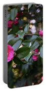 Hot Pink Camellias Glowing In The Shade Portable Battery Charger
