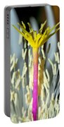 Hot Pink Yellow Top Portable Battery Charger