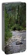 House By The Stream In Vail 1 Portable Battery Charger