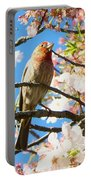 House Finch In The Cherry Blossoms Portable Battery Charger