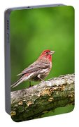 House Finch Perched Portable Battery Charger