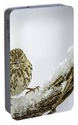 House Finch Snow Is Coming Portable Battery Charger by LeeAnn McLaneGoetz McLaneGoetzStudioLLCcom