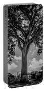 Huge Tree 12 Portable Battery Charger