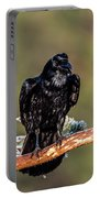 Huginn The Raven Portable Battery Charger