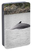 Humpback Whale 5 Portable Battery Charger