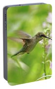 Hummer And Obedient Plant Portable Battery Charger