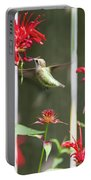 Humming Bird 7 Portable Battery Charger
