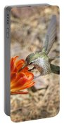 Hummingbird And The Hedgehog  Portable Battery Charger