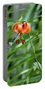 Hummingbird And Tiger Lilly Portable Battery Charger