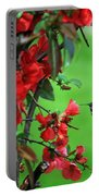 Hummingbird In The Flowering Quince - Digital Painting Portable Battery Charger