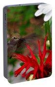 Hummingbird Mid Flight Portable Battery Charger