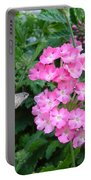 Hummingbird Moth On Pink Verbena Portable Battery Charger