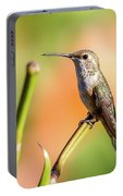 Hummingbird Perched II Portable Battery Charger