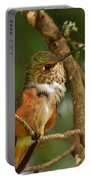 Hummingbird With An Itch Portable Battery Charger