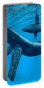 Humpback Whale Bonding Portable Battery Charger
