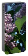 Hungarian Lilac 6 Portable Battery Charger