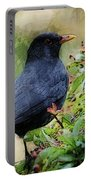 Hungry Blackbird Portable Battery Charger