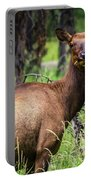 Hungry Elk Portable Battery Charger