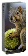 Hungry Squirrel 1 Portable Battery Charger