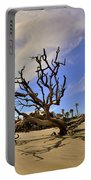 Hunting Island Beach And Driftwood Portable Battery Charger