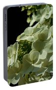 Hydrangea Formal Study Portrait Portable Battery Charger