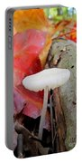 Hygrocybe Borealis Portable Battery Charger