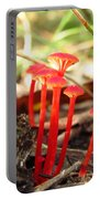Hygrophorus Cantharellus Portable Battery Charger