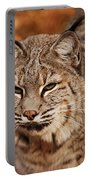 I Am One Good Looking Bobcat Portable Battery Charger